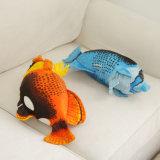 Meninas Adoramos Belo Brinquedo Butterflyfish coloridos