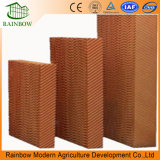 5090/7060/7090 Poultry Evaporative Cooling Pads for Chicken House