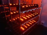 Intensity 높은 60W 크리 말 LED Work Light