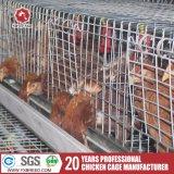 Cage de volaille / Bird Cage / Cage de poulet