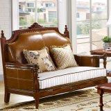كلاسيكيّة جلد أريكة مع طاولة خشبيّ لأنّ يعيش غرفة أثاث لازم