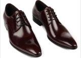 Самые лучшие кожаный ботинки Оксфорд способа Mens