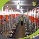 Neues Großhandelslandwirtschaftliche Maschine-führendes Kettensystem des schwein-2017
