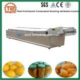La fruta de melocotón Durazno enlatado Blancher palidez de la máquina de esterilización