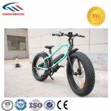 Marken-elektrischer Strom-Fahrrad