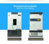 De nieuwe LEIDENE van het Type Biochemische Incubator van de Vertoning