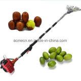 Raccoglitrice Nuts dell'oliva della macchina della raccolta della macchina di raccolto della frutta della benzina