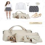 Designs de diferentes cores da moda PU de bolsas para Mulheres