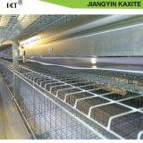Rimozione del concime del pollo dei pp sullo strato del trasportatore della batteria di agricoltura