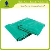Materiale verde del PE della tela incatramata 160GSM