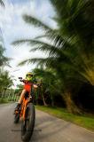 """48V 500W orientées 20"""" de la neige électrique pliant Beach Cruiser Pneus moto Fat Ebike"""