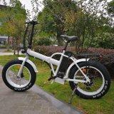 20inch, das fetter Gummireifen-elektrisches Fahrrad für Verkäufe faltet