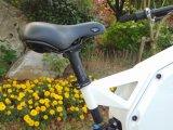 نمو [غود قوليتي] [1000و] مدينة [سكوتر] درّاجة ناريّة [إ] دراجة دراجة كهربائيّة