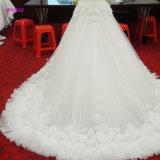 O vestido de casamento luxuoso elegante com Applique 3D floresce o vestido nupcial