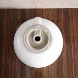 La porcelaine sanitaire, le navire évier (6013)