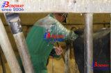 De veterinaire Ultrasone klank van de Varkens van de Ultrasone klank van de Echografie van de Ultrasone klank Veterinaire Paarden