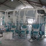 La farine de blé pour la production automatique de la ligne d'usine de pâtes et le gâteau de pain