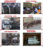 Heißer verkaufender chinesischer 10kw Dauermagnetgenerator Pmg