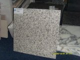Lastra bianca poco costosa del granito del granito bianco G655