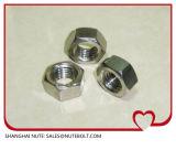 Acier inoxydable 304 316 noix Hex DIN934 M45