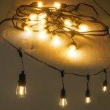結婚式の装飾のためのS14 LEDのフィラメントの球根ストリングライト