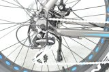 2018 Venta caliente a mediados de freno de disco hidráulicos del motor de accionamiento neumático Fat Electric Bikes bicicleta eléctrica E-Bike