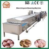 Máquina de cocinar automática calentada al vapor de la máquina y del blanqueo