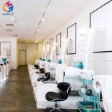 Presidenza poco costosa di massaggio di Pedicure della presidenza della STAZIONE TERMALE del piede della presidenza di Pedicure