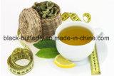 Avantages du thé vert minceur à base de plantes de régimes de perte de poids des pilules