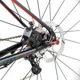 700c Shimnao 20speed Aluminiumstraßen-Laufenfahrräder mit Kohlenstoff Gabel