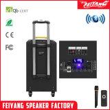 Feiyang Портативный аккумулятор АС с Bluetooth 2 Mic УВЧ--Qx-1014