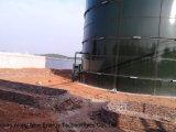 pianta del biogas del serbatoio di 1*600m3 Cstr