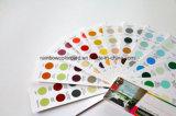 Catálogo de cartão padrão de Fandeck da cor da arquitetura