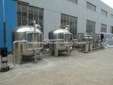 자동적인 RO 물 식용수 처리 공장