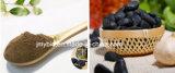 Knoblauch-Auszug-Puder-Auszug des Polyphenol-2%~20% hochwertiger gealterter schwarzer