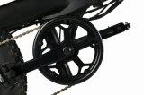 20インチアルミ合金の車輪によって折る電気推圧バイク