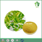 Improving Memory&Anti-Septic: Thyme Extract Thymol 90%