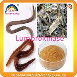 La parte superior de la enzima 20000Quanlity Nattokinase fu/G como Lumbrokinase