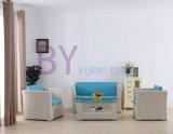 Eben PET Rattan-im Freienmöbel-Sofa-Set