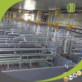 Система свиньи цепная автоматическая подавая и сухая подавая система