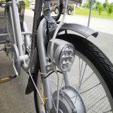 リチウム電池の老人の電気三輪車