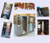 5 seguros e de confiança forno elétrico da conveção de 10 bandejas (câmara esmaltada)