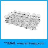 De duidelijke Spelden van de Duw van de Magneten van het Memorandum van de Magneten van het Bureau Magnetische