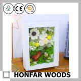 Frame de retrato de madeira branco da caixa de sombra para o presente