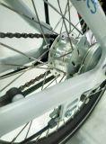 la última bicicleta eléctrica plegable elegante del mecanismo impulsor medio E del estilo de 20 pulgadas de 36V 10ah