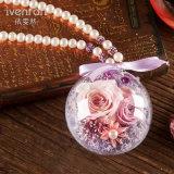 Regalo naturale del fiore di 100% Rosa per la decorazione