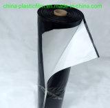 6m 8m 10m 18s 19s 20s película de plástico preto e branco /anti-UV preto branco filme para tenda no Suriname