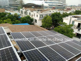 La maggior parte di mono modulo solare di risparmio di temi 320W per sul sistema solare di griglia