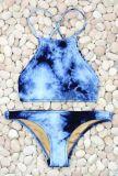 Бикини женщины Swimwear спорта нестандартной конструкции сублимации в большом части 2017