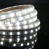5050 120V 6000k impermeabilizan la luz de tira al aire libre del LED